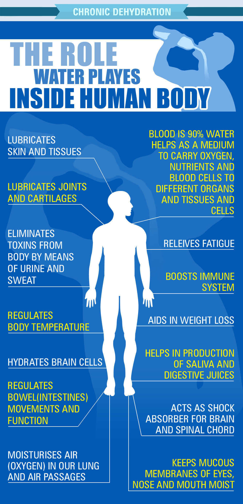 the human body and water dehydration essay The human body is roughly 75 percent water without this water, it cannot survive  water is found inside cells, within blood vessels, and.