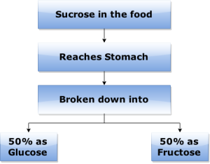 sucrose-in-the-food, Sugar, Sucrose, Glucose, Fructose, Obesity, Hypertension, Dyslipidemia, Diabetes, Hormonal Imbalance, Gout, Acidity, Fruits and Vegetables,Soft Drinks,Fruit Juices,Energy, Drinks,Processed foods Instant, foods, Maple syrup,Potato Chips,Chocolates,Cakes,Chewing Gums, dextrose
