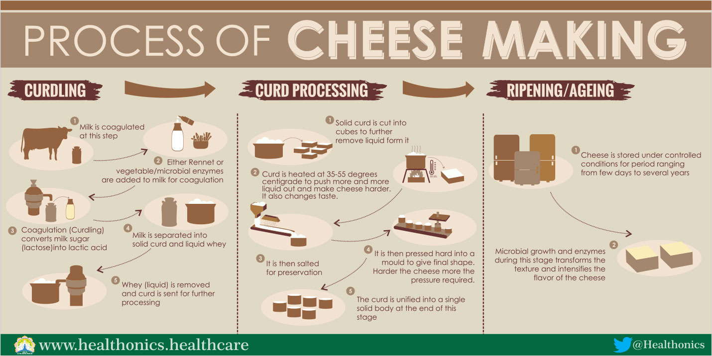 Process of Cheese Making